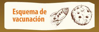 Calendario Vacunacion Colombia